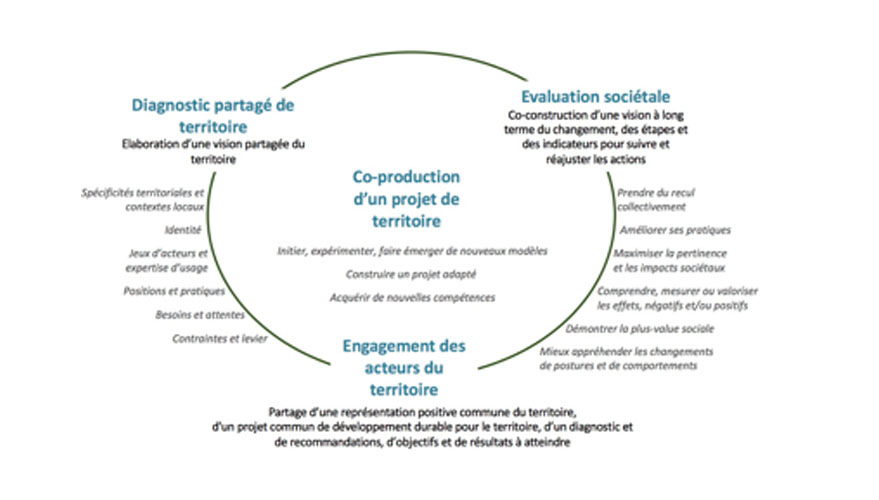 schema-coproduction